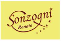 logo Autoservizi Sonzogni